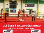 gala-box.JPG