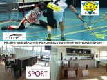 F-sport.JPG
